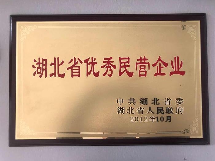 湖北省民营企业