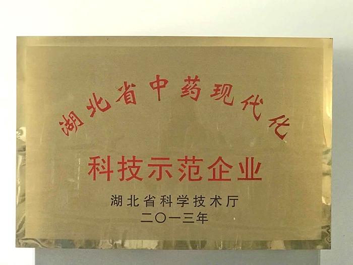 湖北省中药科技示范企业